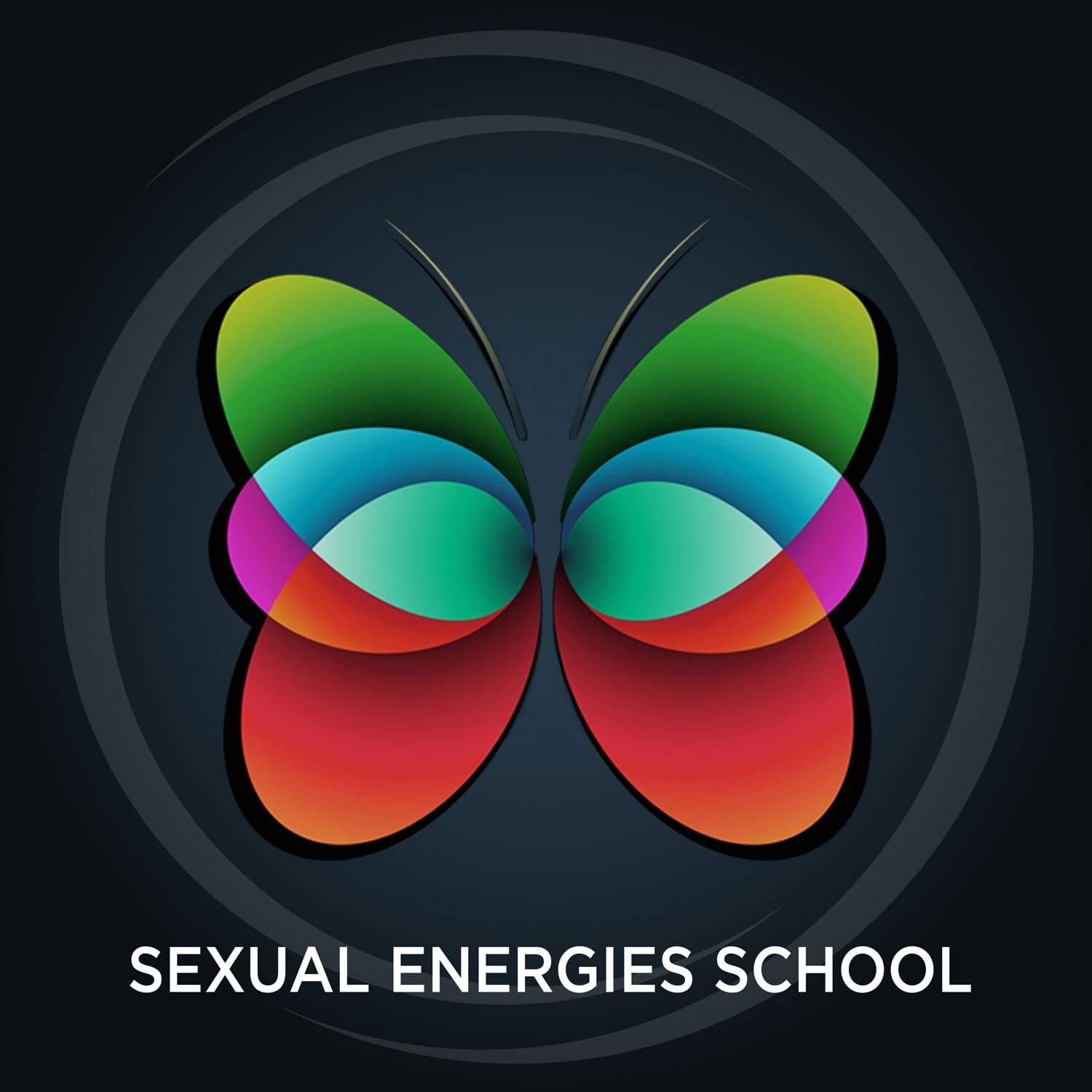 Sexual Energies School